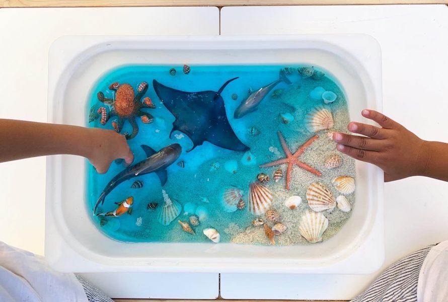 DIY : A la découverte de la Mer !