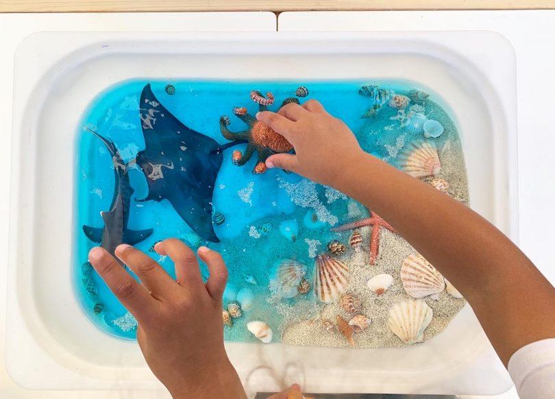 Fabriquer et jouer au bac sensoriel de la mer